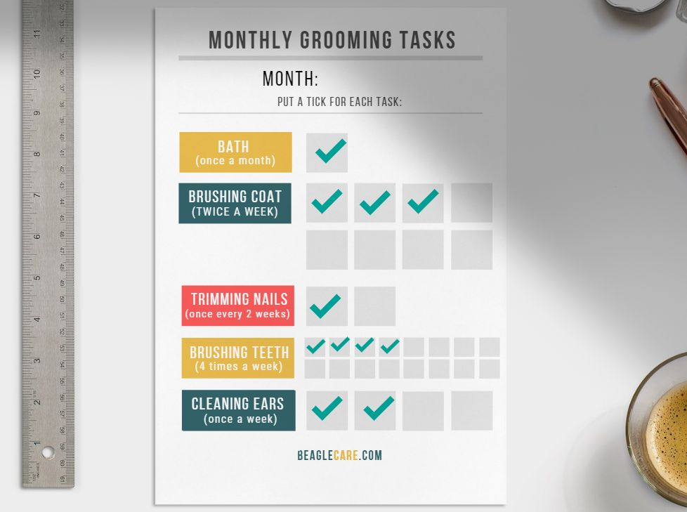 Grooming task planner and scheduler