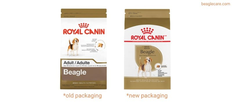 royal canin beagle dry dog food review